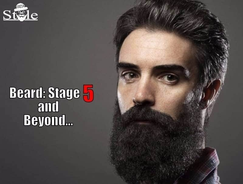 beard growing stages 1