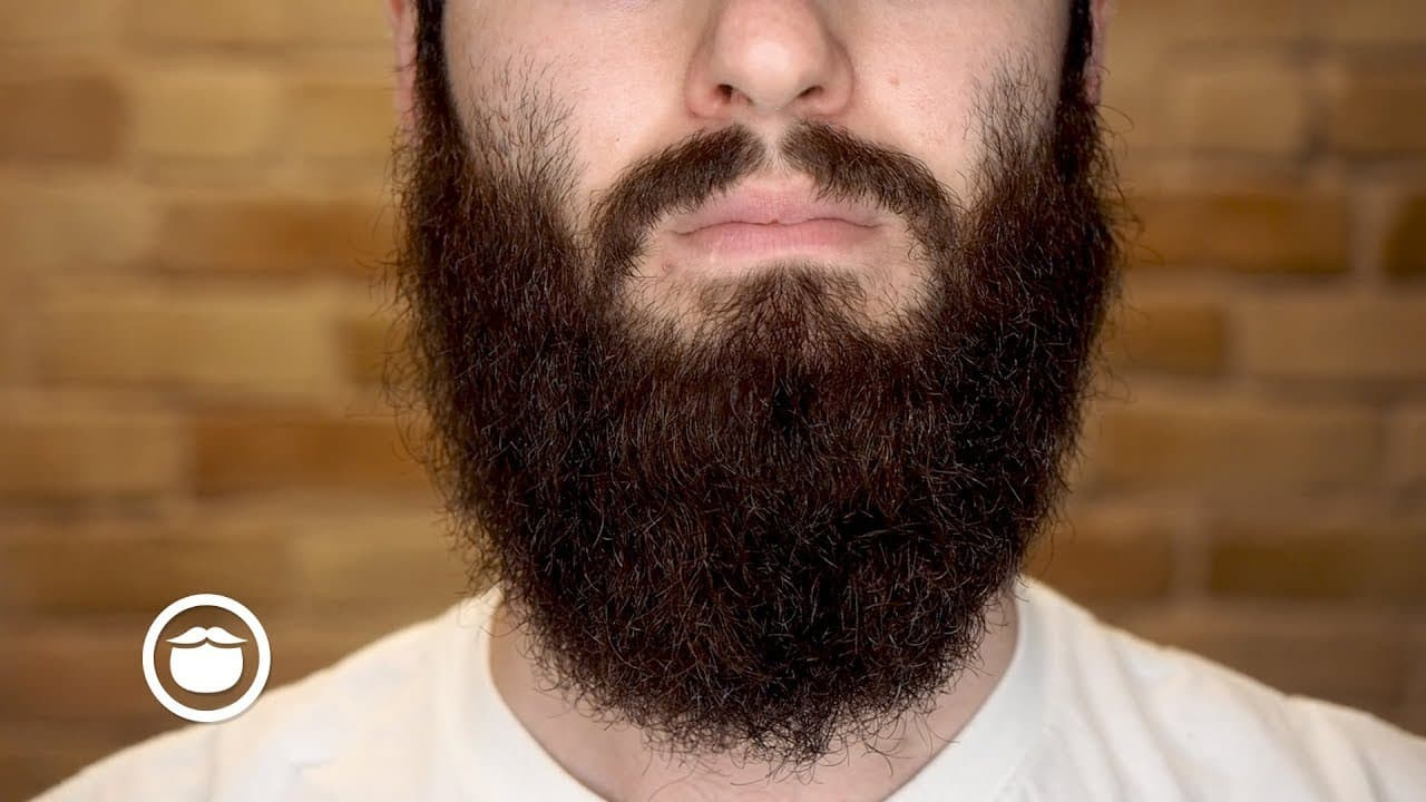 grow thicker beard 1