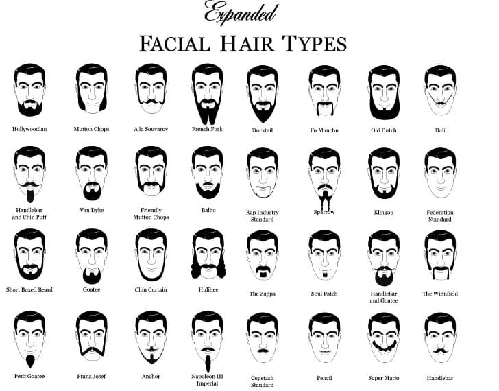 another word for beard and mustache 1