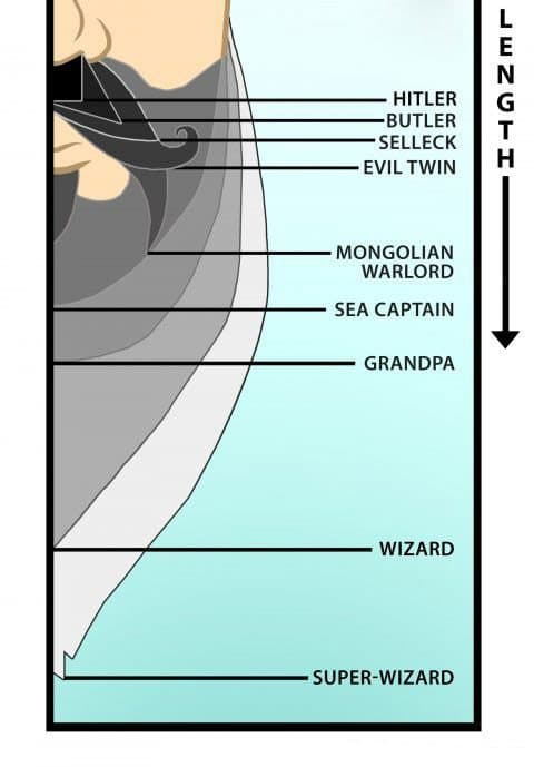 beard length guide 1