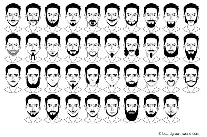 Types Of Beard Styles Facial Hairstyles