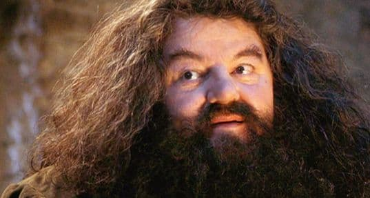 hagrid without beard 1