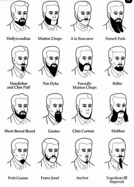 types of mustache and beard 1