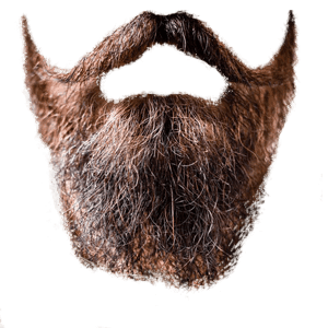 fake red beard and mustache 1