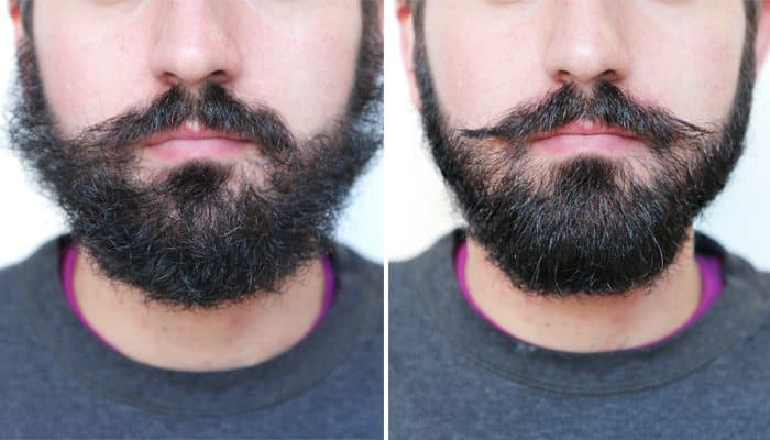 how to train your mustache and beard 1