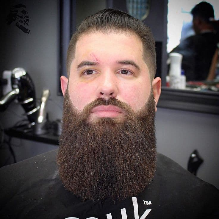 Long beard trimmed mustache