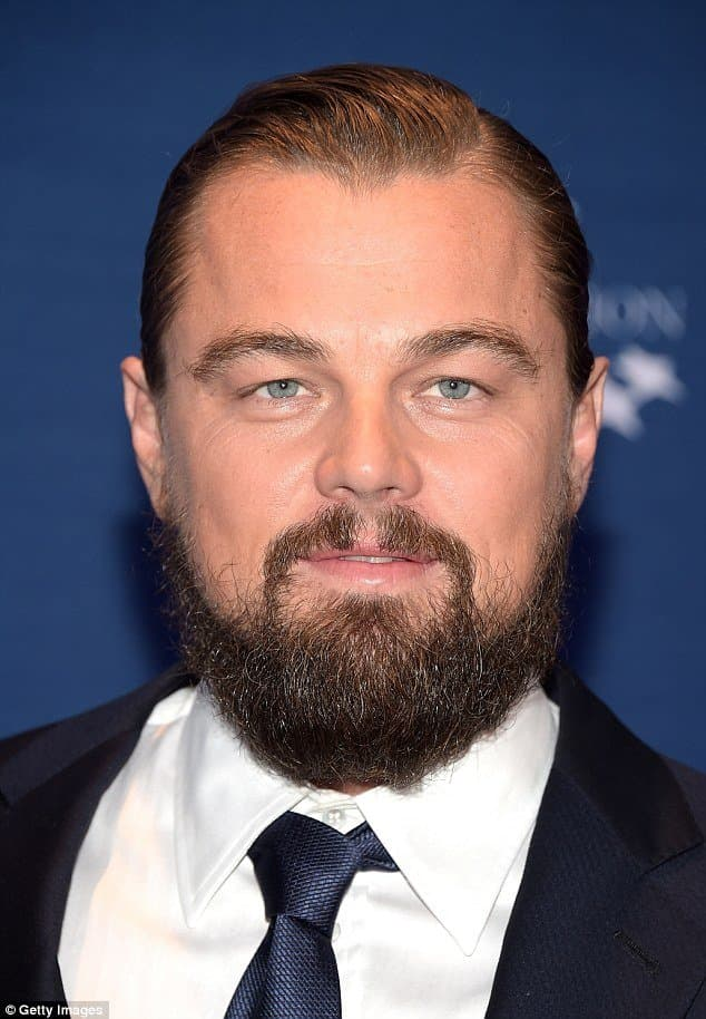 beard style for round face photo - 1