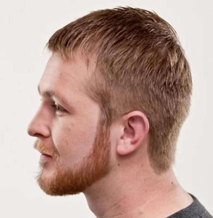 chin curtain beard photo - 1