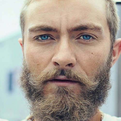 facial hair styles for blonde hair photo - 1