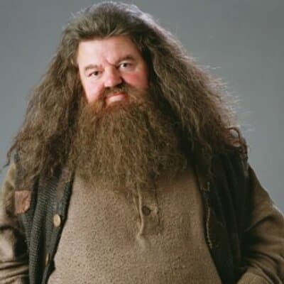 hagrid beard photo - 1