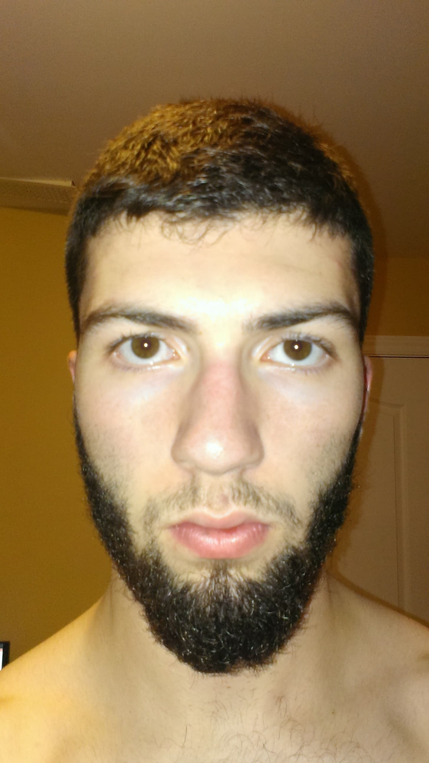 king leonidas beard photo - 1