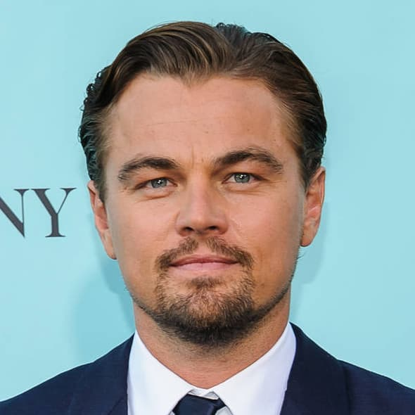 Leonardo Dicaprio facial hairstyles photo - 1