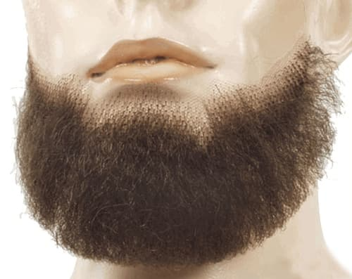long mustache beard photo - 1