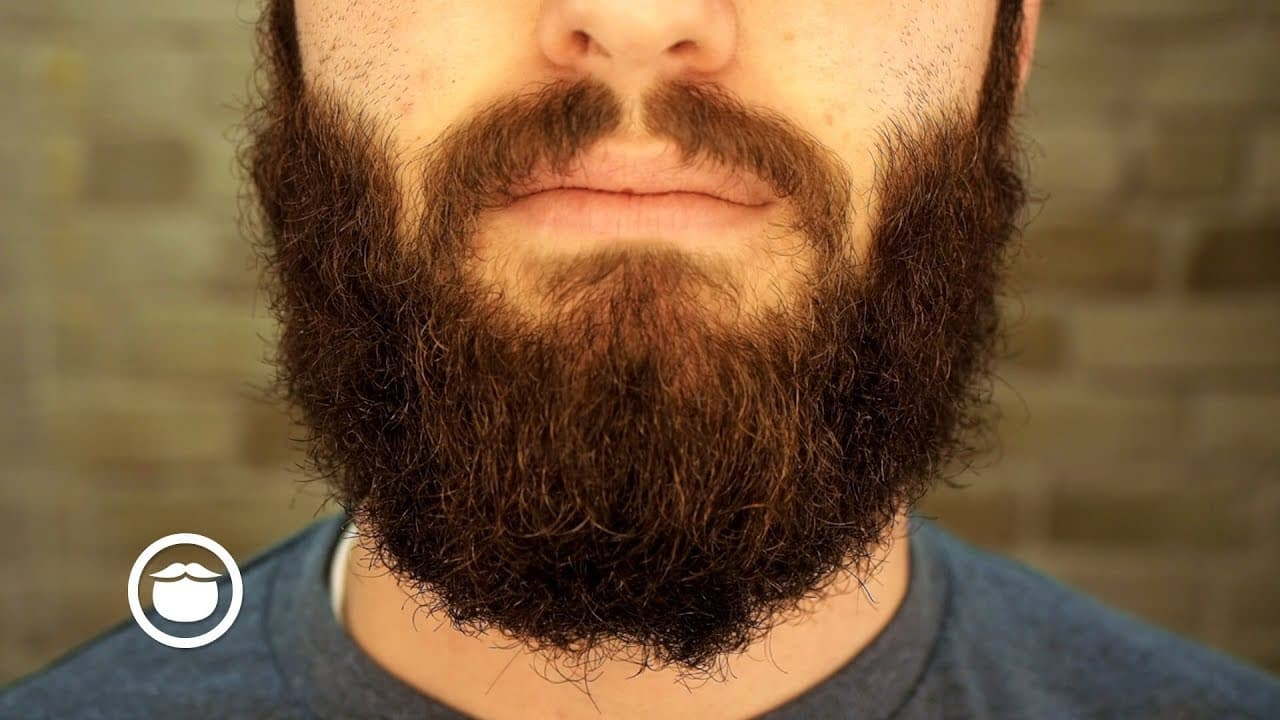 stages of a beard photo - 1