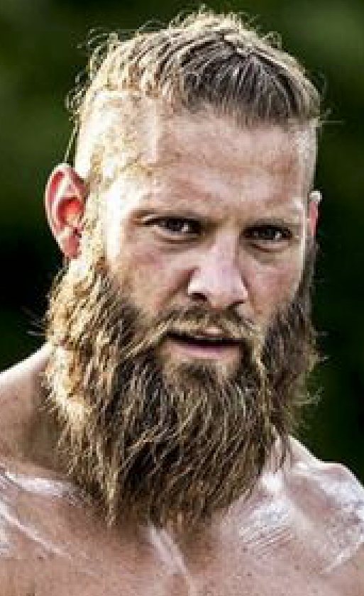 viking braided beard photo - 1