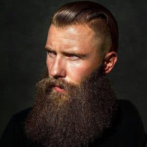 beautiful beard 1