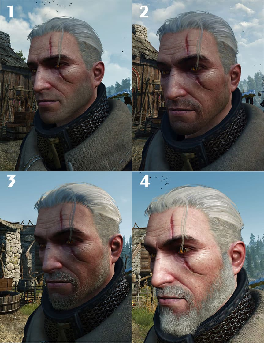 witcher 3 longest beard 1